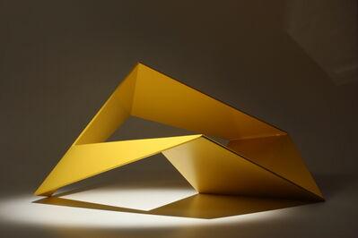 Szumin KUO, 'Metamorphosis #12', 2011