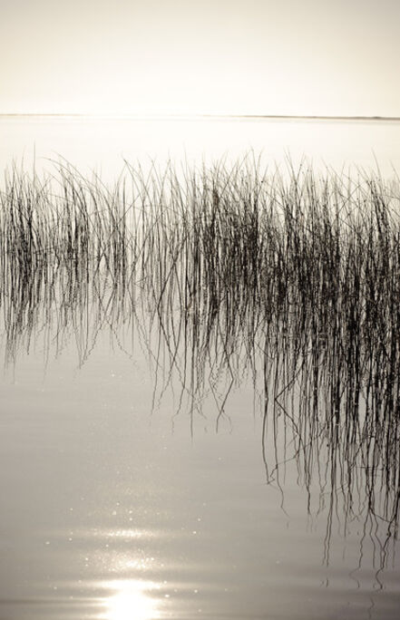 Bill Jackson, 'Impound the Sun', 2013