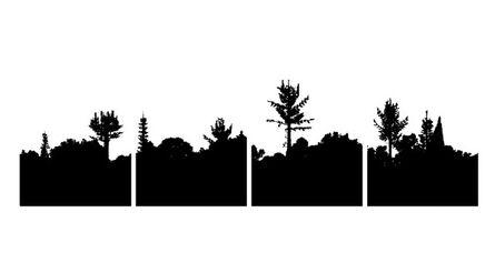 Daniel Alcalá, 'Naturaleza y Artificio', 2017
