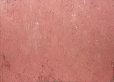 Phoebe Collings-James, 'Flesh Tint Painting No.4', 2013