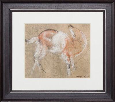 Camille Roche, 'Mouflon'