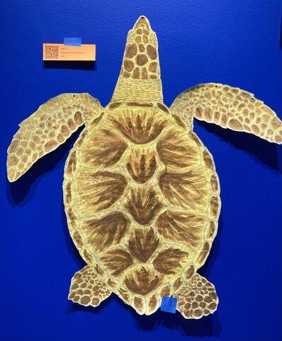 Nina Katchadourian, 'Sea Turtle #1-10', 2020