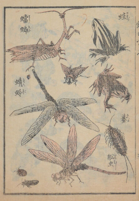 Keisai Eisen, 'Insects', ca. 1845
