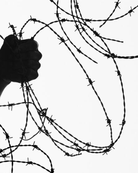 Matthew Porter, 'Barbed Wire', 2019