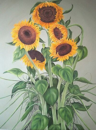 Allison Green, 'Summer Sunflowers', 2013