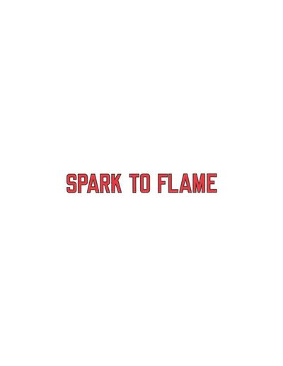 Lawrence Weiner, 'Spark to Flame', 2019
