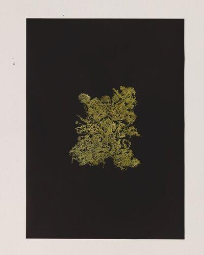 Haegue Yang, 'Golden Singular – Instant Noodle Natural', 2013