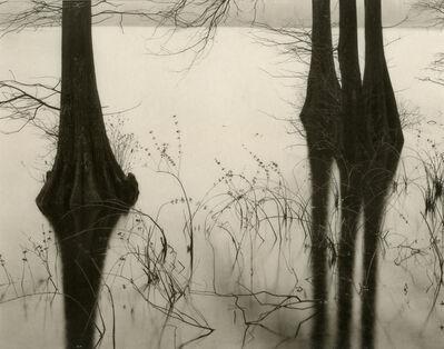 Koichiro Kurita, 'Chesapeak', 1991