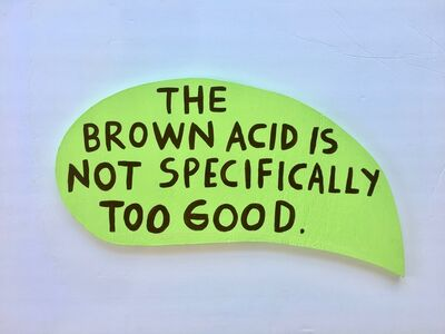 Martha Rich, 'The Brown Acid is Not Specifically Too Good.', 2019