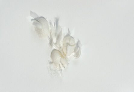 Safaa Erruas, 'Vies parallèles', 2015