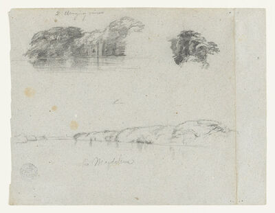Frederic Edwin Church, 'Sketches of Trees, Vines and a Bank of the Rio Magdalena, Colombia', 1853