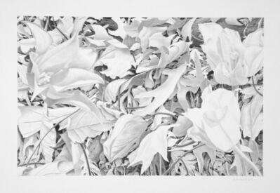 Bill Richards, 'Hudson River Park #7, Three Flowers', 2007