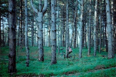 Olga Lavrushko, 'My Favourite Place', 2014