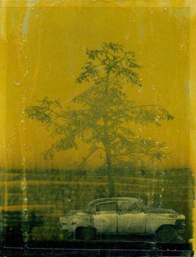 Moris, 'Fake tree man (Third) II', 2014