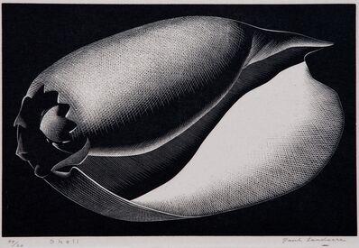 """Paul Landacre, '""""Shell""""', 1935"""