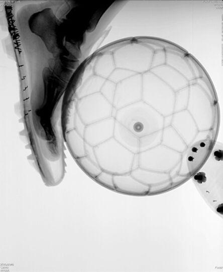 Steve Miller, 'Foot and Ball', 1998