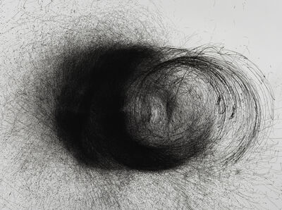 Cameron Robbins, 'Wind Section 26-31/12/2013 (Centrifuge) detail', 2013