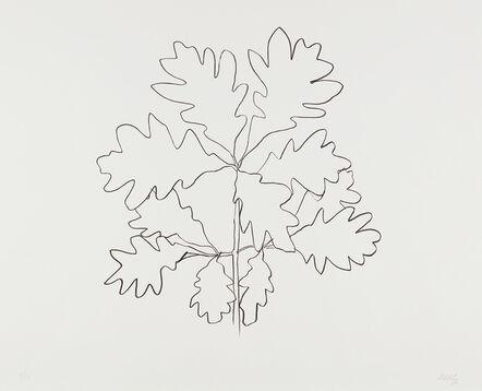 Ellsworth Kelly, 'Oak VI, from Series of Oak Leaves', 1992