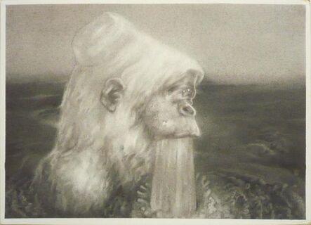 Satoshi Okano, 'gorilla', 2013
