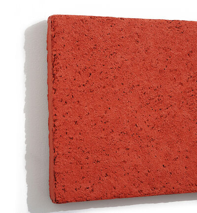 Brian Blanchflower, 'Detail - Concretion 1:5.6 (coral)', 2007