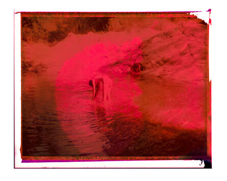 Cristina Fontsare, 'Pink red water', 2019