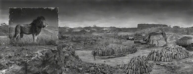 Nick Brandt, 'Quarry with Lion', 2014