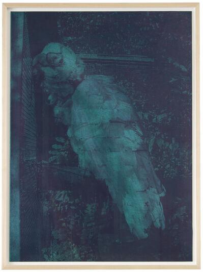 Birde Vanheerswynghels, 'Untitled (bird)', 2020