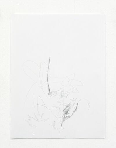 Matt Siegle, 'Drawing #5', 2018