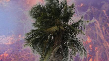 Lana Z Caplan, 'HedonHeathen 1', 2013