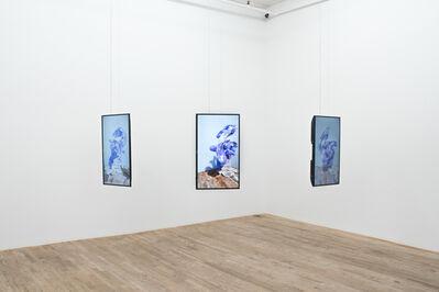 Pussykrew, 'VELELLA', 2019