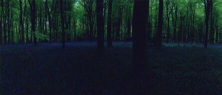 Chrystel Lebas, 'Blue Hour, Untitled #3', 2005