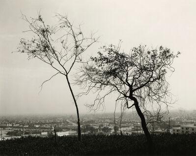 Robert Adams (b.1937), 'On Signal Hill, Overlooking Long Beach, California', 1983