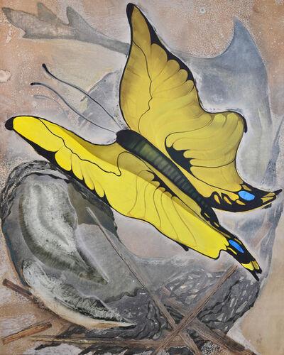 Julia von Metzsch Ramos, 'Butterfly and Shark', 2012