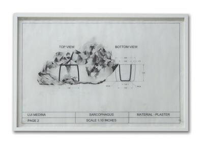 Lui Medina, 'Untitled (Natural History 4)', 2013