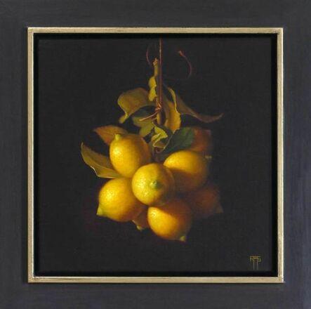 Raquel Alvarez Sardina, 'Young Lemons', 2017