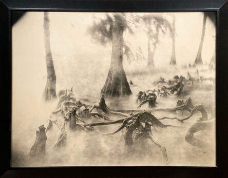 Sally Mann, 'Deep South, Untitled (Swamp Bones)', 1998