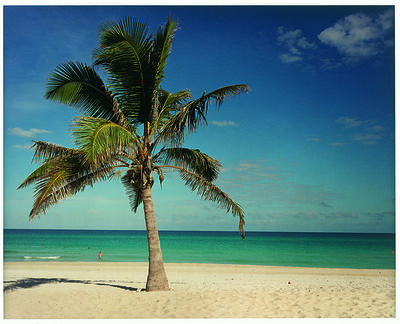 Christopher Williams, 'Punta Hicacos, Varadero, Cuba February 14, 2000', 2000