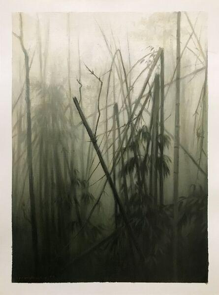 Jaco van Schalkwyk, 'Thickest Jungle', 20187
