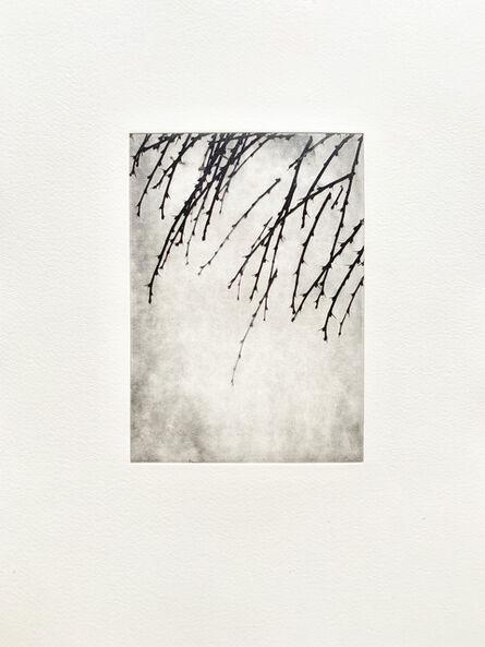 Anna Helena Cazzani, 'Sem título', 2011