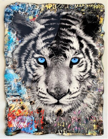 Adriano Cuencas, 'Blue Eyes Tiger', 2020