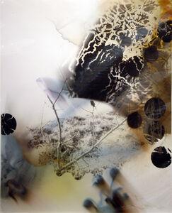 Susan Rankaitis, 'LPD #21', 2007