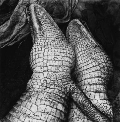 Debbie Fleming Caffery, 'Gator Love', 1995