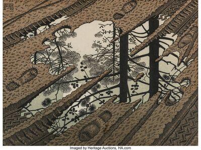 Maurits Cornelis Escher, 'Puddle', 1952