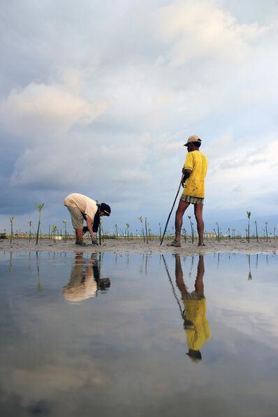 Irwandi M. Gade, 'Mangrove reforestation'