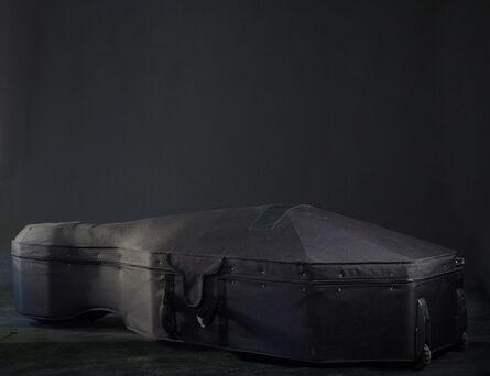 Steinar Christensen, 'Double Bass Case', 2012