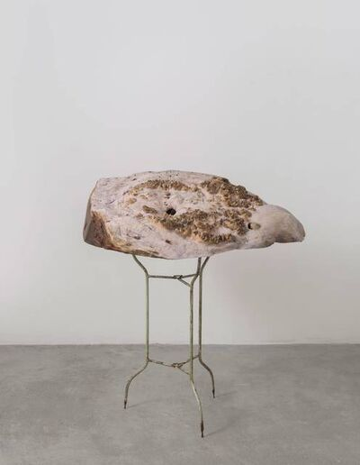 Hu Xiaoyuan 胡晓媛, 'Grass Thorn I', 2016