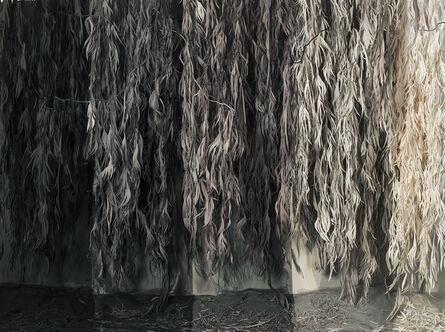 Shirley Wegner, 'Eucalyptus, 5_10_15_20_25 seconds', 2019