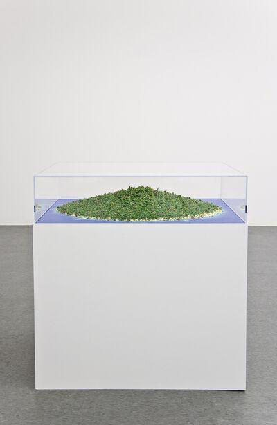 Tom Friedman, 'Island', 2009