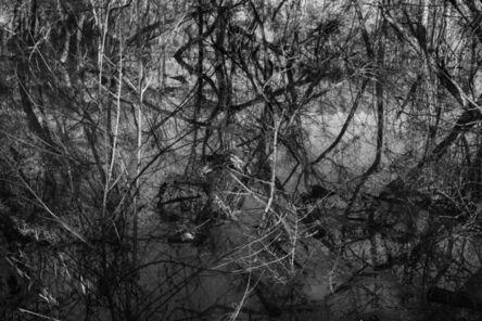 Richard Skoonberg, 'Winter Opus', 2020