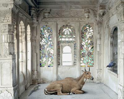 Karen Knorr, 'A place like Amravati, Udaipur City Palace'